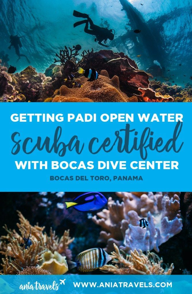 Getting my PADI Scuba Certification with Bocas Dive Center ...