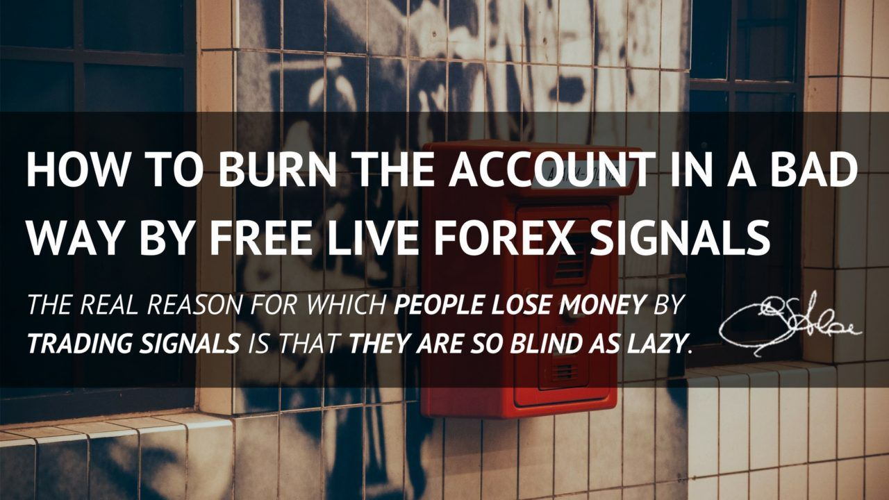 Free Live Forex Signals How To Burn The Account Girolamoaloe
