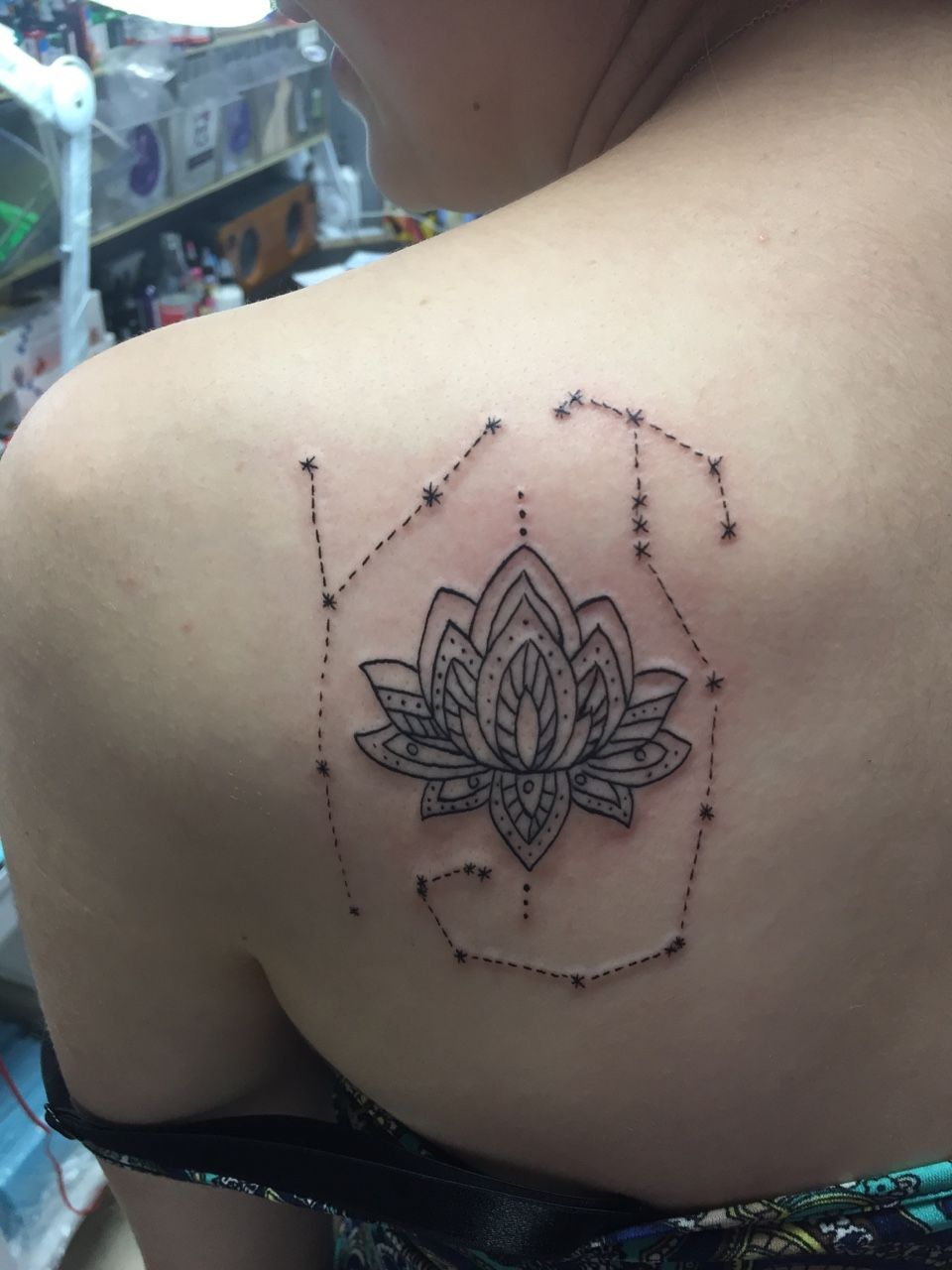 a mandala lotus flower surrounded by cancer and scorpio