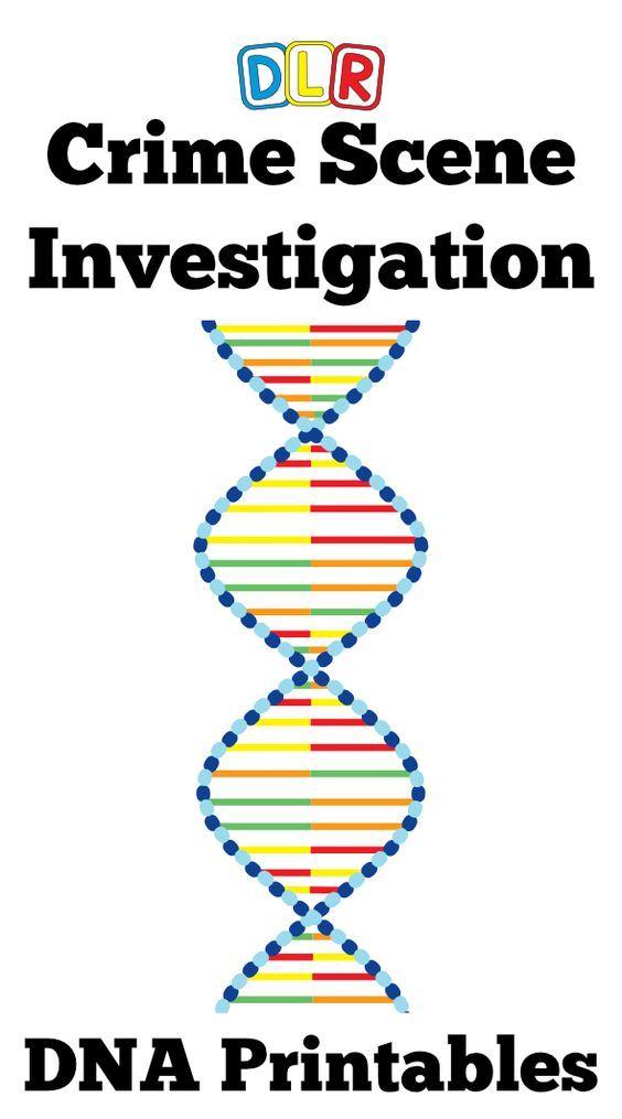 forensic science crime scene investigation activity breakout forensic science forensics. Black Bedroom Furniture Sets. Home Design Ideas