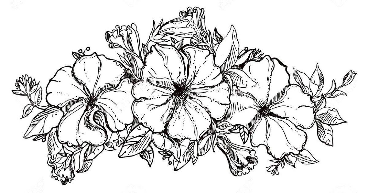 Wow 13 Sketsa Bunga Dan Vas Gambar Sketsa Bunga Harian Nusantara 62 Sketsa Vas Bunga Dan Bunganya Cara Membuat Vas Bu Sketsa Bunga Bunga Tato Bunga Teratai
