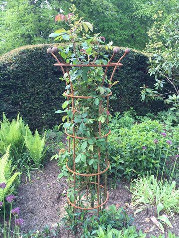 clematis rose obelisk landscape garden structures. Black Bedroom Furniture Sets. Home Design Ideas