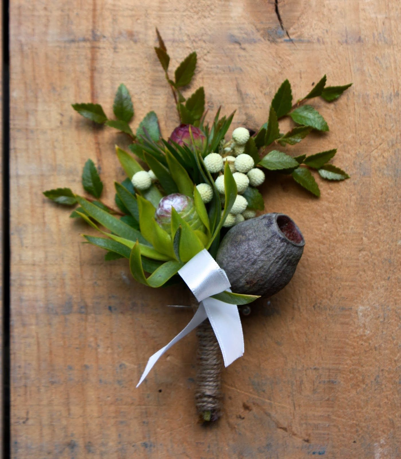 Leucadendron And Gum Nut Boutonniere