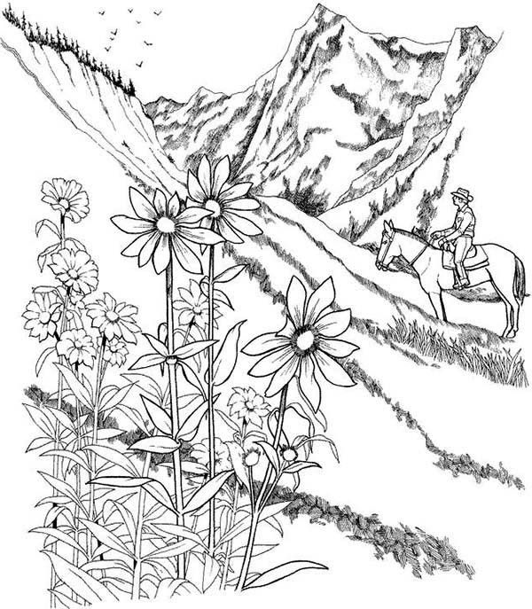 coloring pages prairie - photo#14