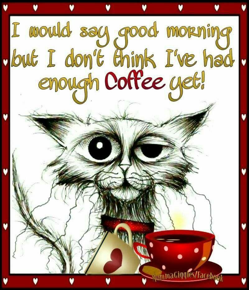 Good Morning Tuesday Coffee Meme