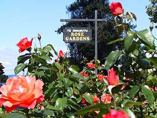 Te Awamutu Rose Garden Http Www Teawamutuinfo Acatalog
