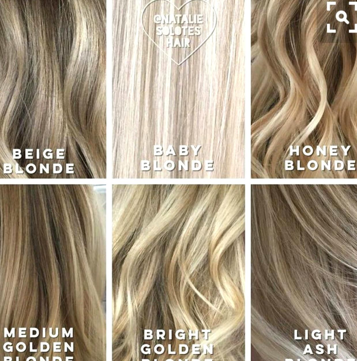 Shades Of Blonde Blonde Hair Color Chart Beige Blonde Hair Blonde Hair Color