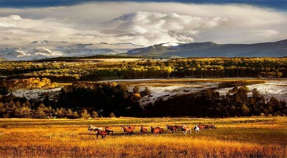 2012 Land Report Best Brokerages: Telluride Sotheby's International Realty