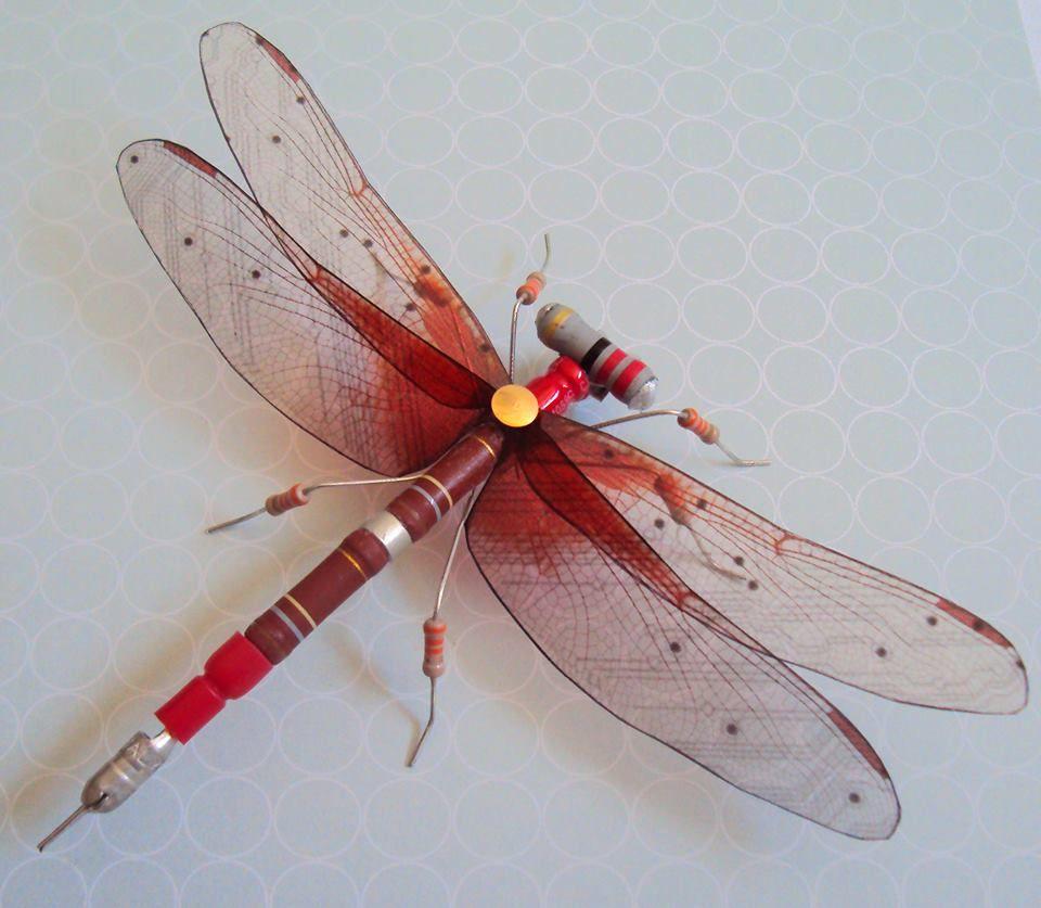 Julie Alice Chappell Artist Bug Art Insect Art Beetle Art
