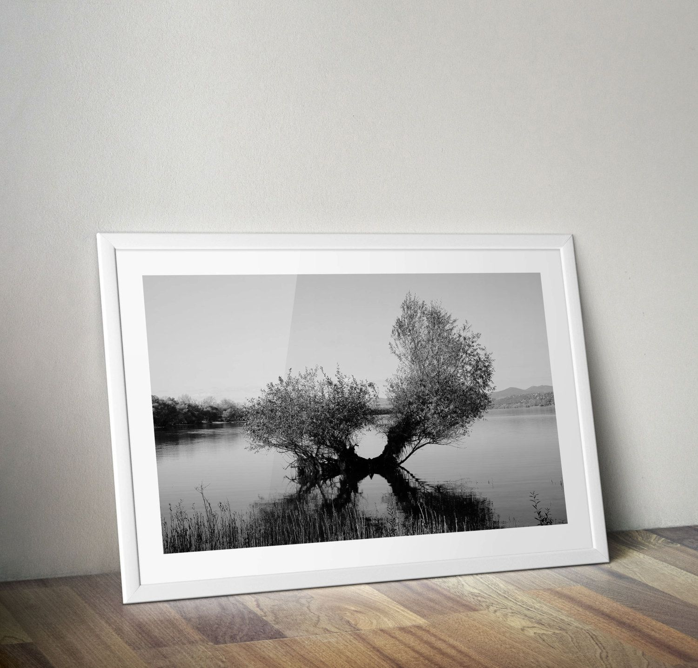 Nature Photography Minimal Photography Wall Art Decor Black and