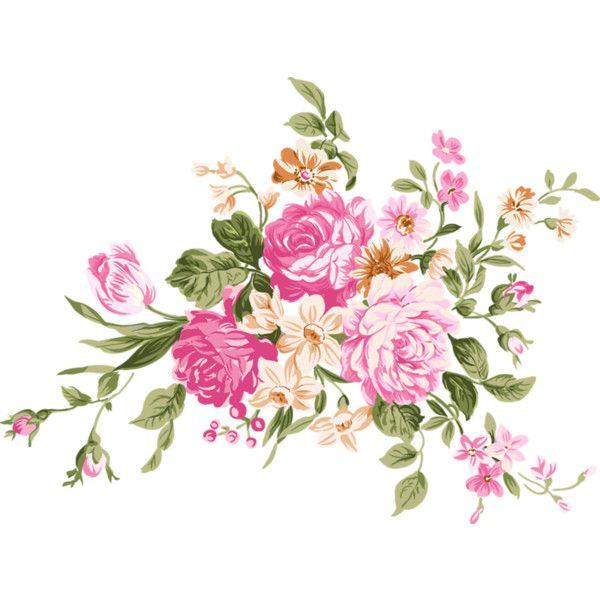 Yandeks Fotki Liked On Polyvore Featuring Flowers Plants