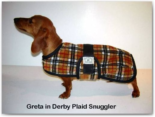 A More Manly Dog Coat For The Little Dude Dog Coats Dachshund