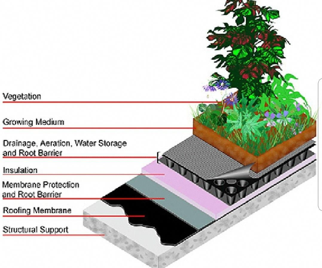 Green Roofs And Great Savings Green Roof System Green Roof Living Roofs