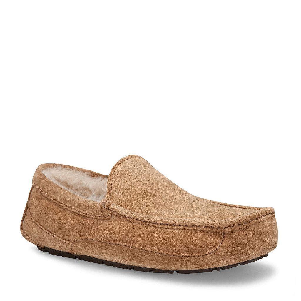 UGG® 19798 Ascot UGG® Ascot Mens Slipper. 0c3a4b8 - nobopintu.website