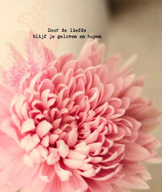 Citaten Love Me : Happinez pinterest love me quotes en