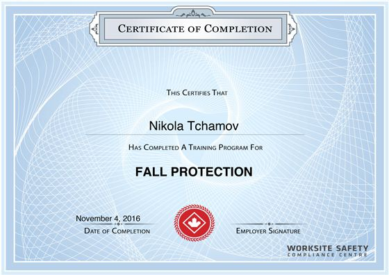 Fall Protection Certificate Security Surveillance Group - training certificate