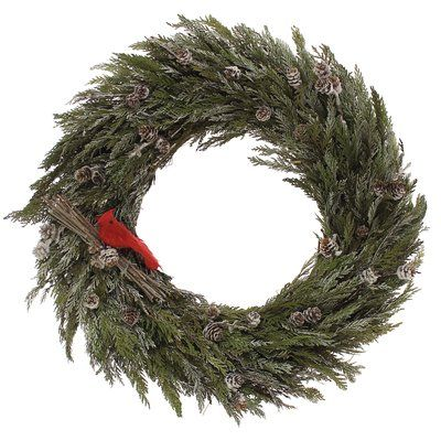 The Holiday Aisle Snowy Pinecone/Cedar Wreath Size: 22""