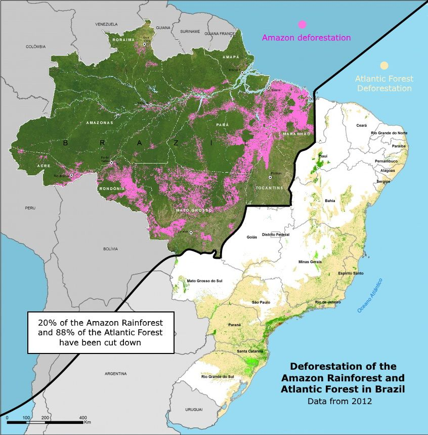 Deforestation of the Amazon rainforest and Atlantic forest ...