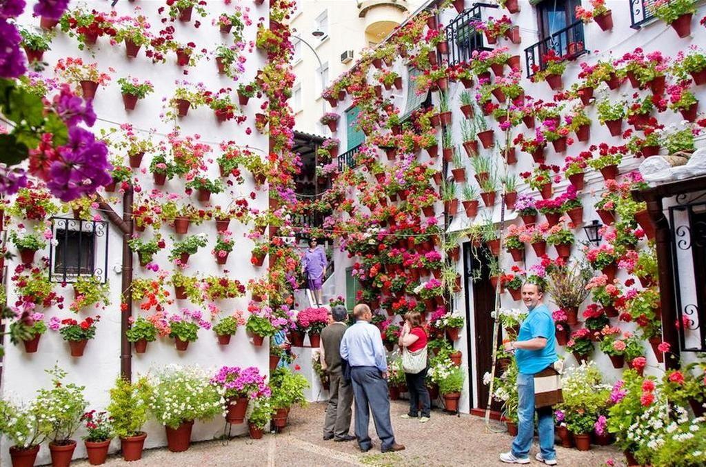Patios (Córdoba), by @puntoess