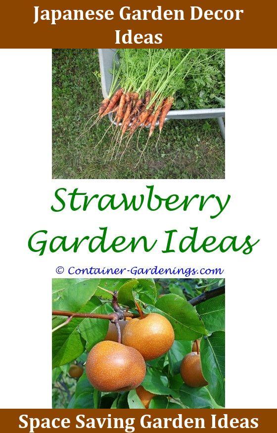 Gargen Vintage Garden Party Ideas,flower gardening tips in malayalam ...