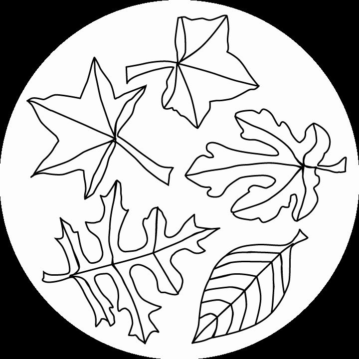 Fall Leaf Coloring Page Elegant Fall Leaves Coloring Pages ...