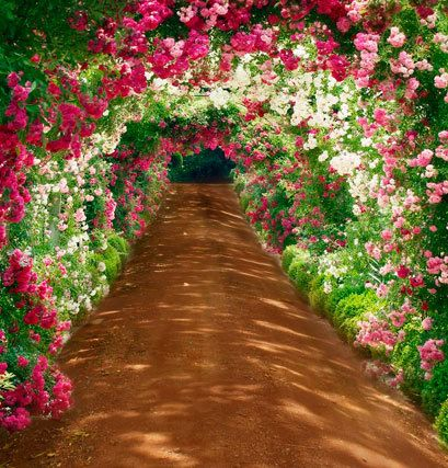 flower tunnel font b b font scenic outdoor 5x7ft backdrops