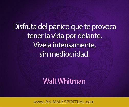 Pin De Carlos Valdes En Conciencia Walt Whitman Pensamientos Intenso