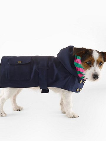 Dog Raincoat For The Pet Home Ralphlauren Com Dog Raincoat Pets Low Maintenance Pets