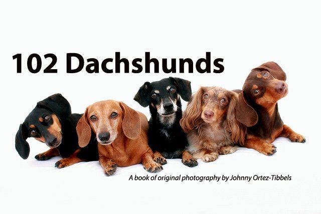 102 Dachshunds A Book For Charity Dachshund Love Dachshund