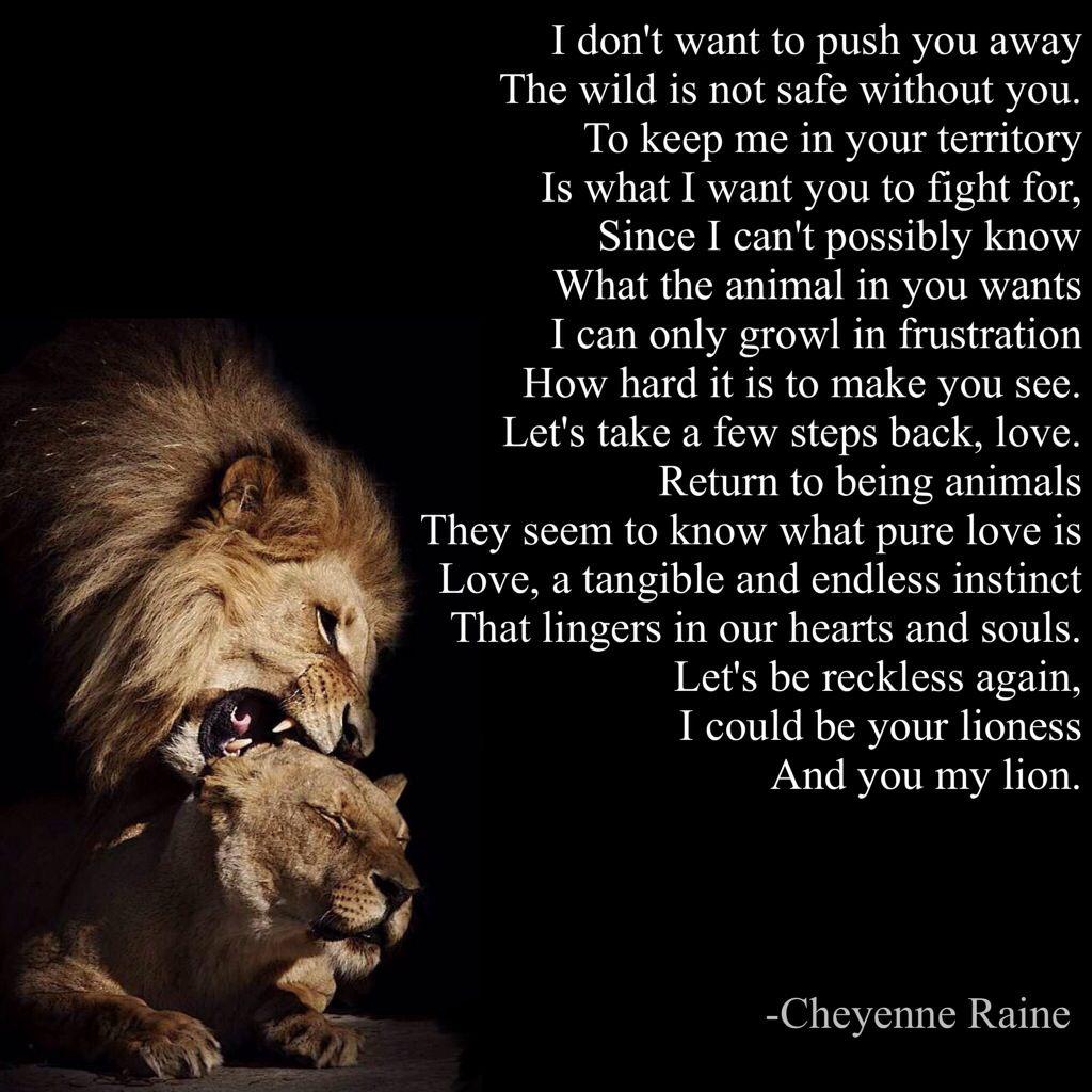 Love Animal Quotes: Lion Poem Poetry Lioness Love Poet Animal Roar Growl