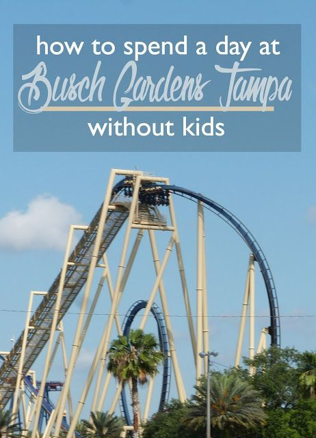Parking At Busch Gardens Tampa Cost