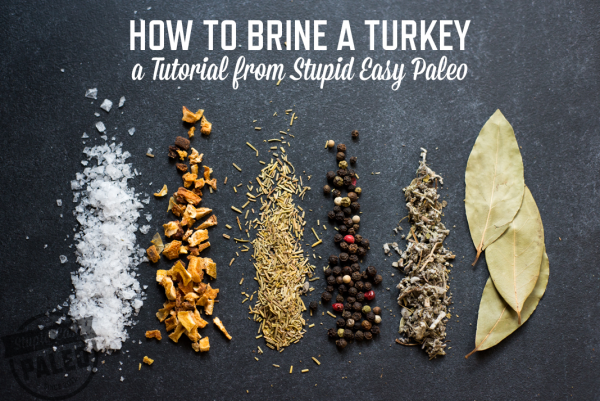 How To Brine a Turkey or Chicken – Steph Gaudreau