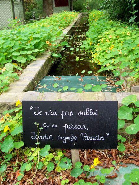 R sultat de recherche d 39 images pour citation sur le for Recherche jardinier pour entretien jardin