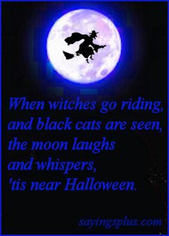 Elegant When Witches Go Riding And Black Cats Are Seen The Moon Laughs And Whispers  Tis Near