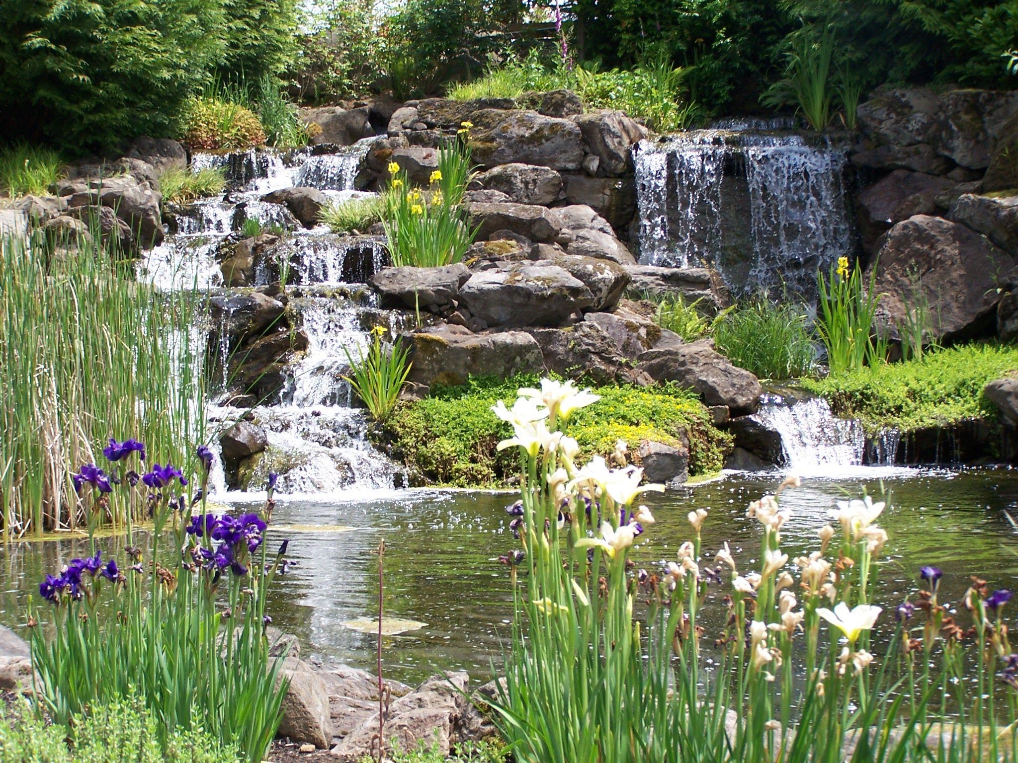 Beautiful Man Made Waterfall Display At The Oregon Gardens Near