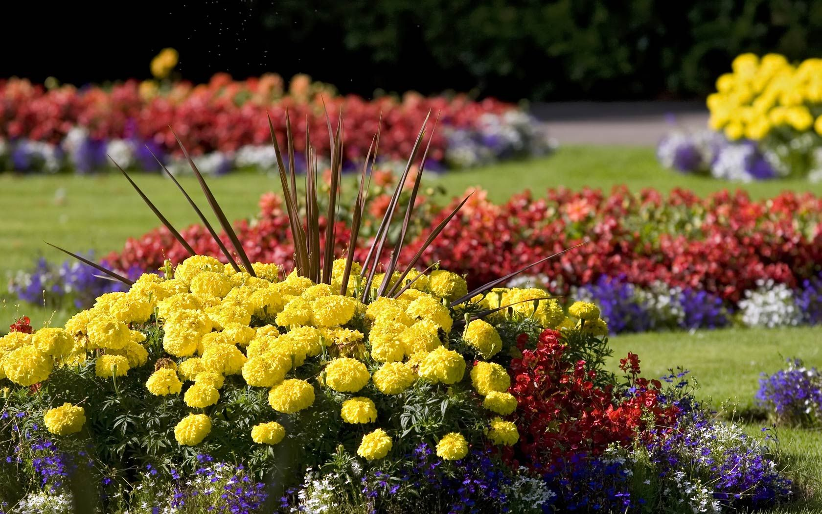 Small flower rock garden designs annual flower beds for Small flower garden design