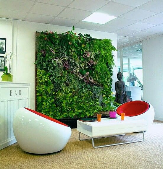 Indoor Green Wall With Awesome Long Leaved Grass And Lots Of Different Plant  Design Feat Modern Lots Of Door Under Transparent Roof Ideas For Indoor And  ...