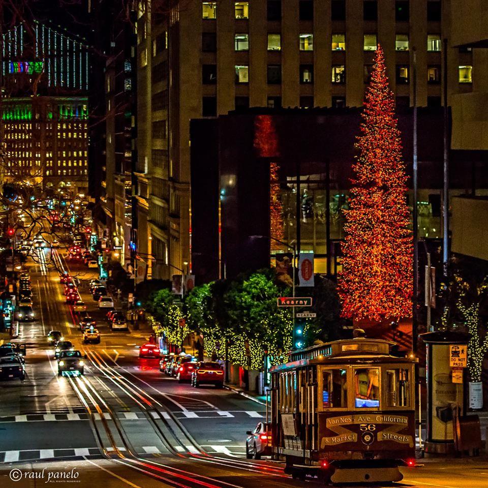 Oh Christmas Tree - Crystal Pyramid Productions