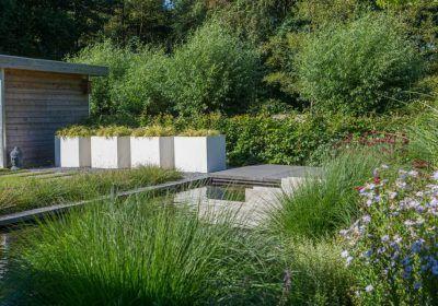 Moderne Tuin Strakke Vijver Witte Bloembakken Siergras Bloeiende