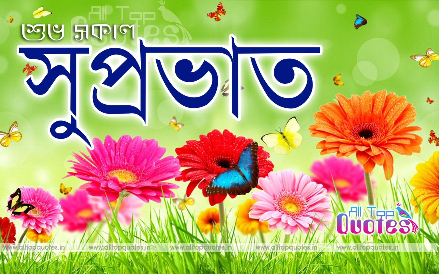 Good Morning Bengali Bangla Quotes All Top Quotes Telugu Quotes