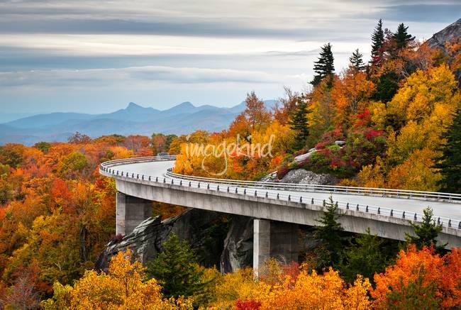 Linn Cove Viaduct Blue Ridge Parkway Fall Foliag by Dave Allen