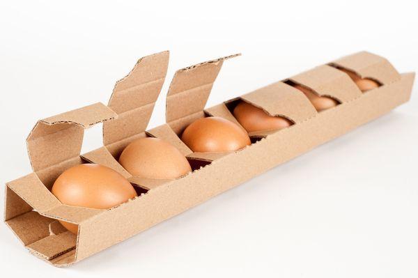 Egg Boxs
