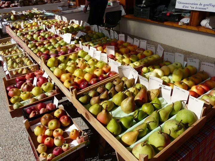 Fête de la pomme à  Val de Fier,  Photo du 11-10-09