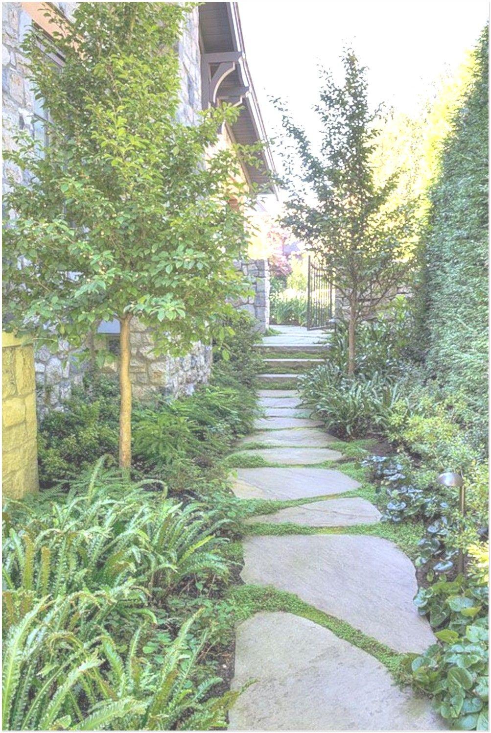 86 Images Of Beautiful Backyard Landscaping Ideas That So Inspiring In 2020 Side Yard Landscaping Walkway Landscaping Narrow Garden