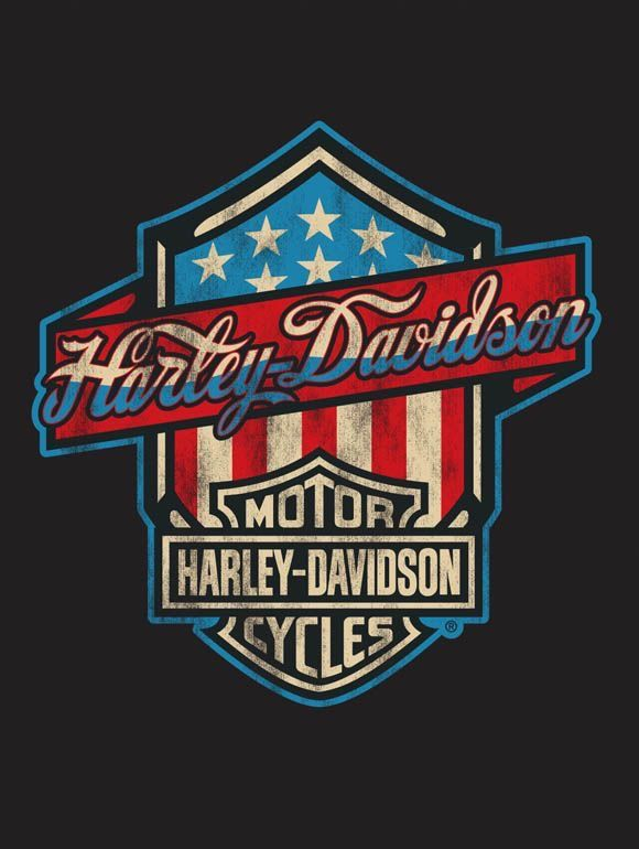 Risultati immagini per harley davidson logo americano