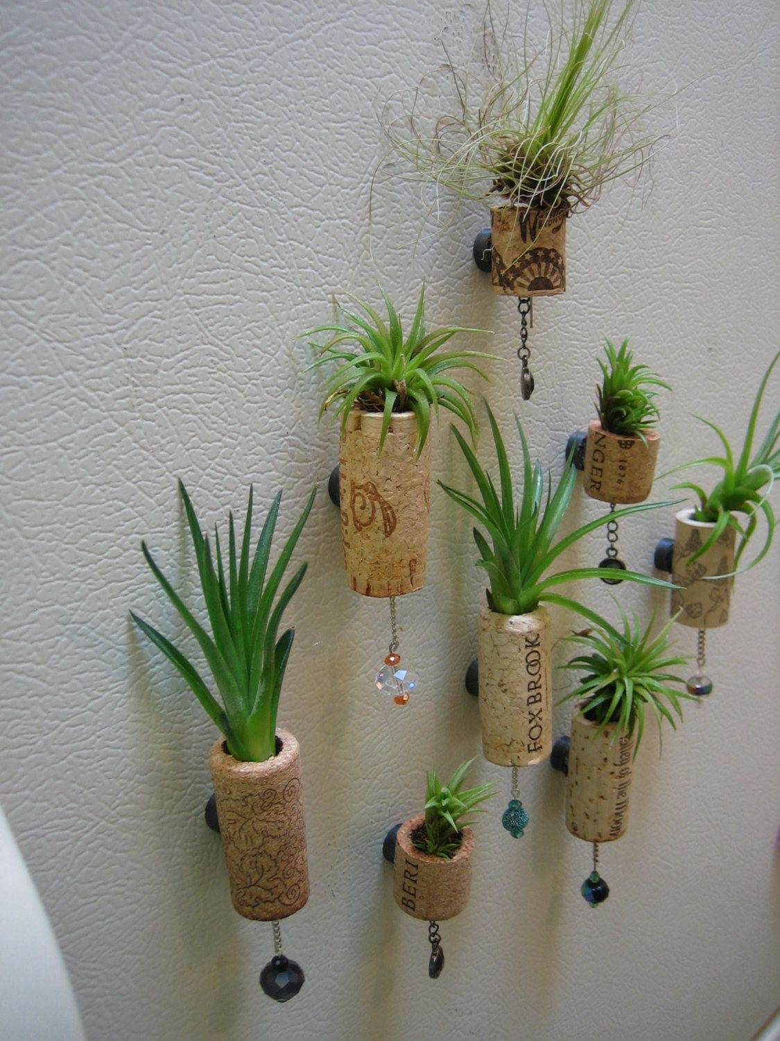 set of 5 unique air plant cork succulent magnet by natazaleasart interesting exteriors ideas. Black Bedroom Furniture Sets. Home Design Ideas