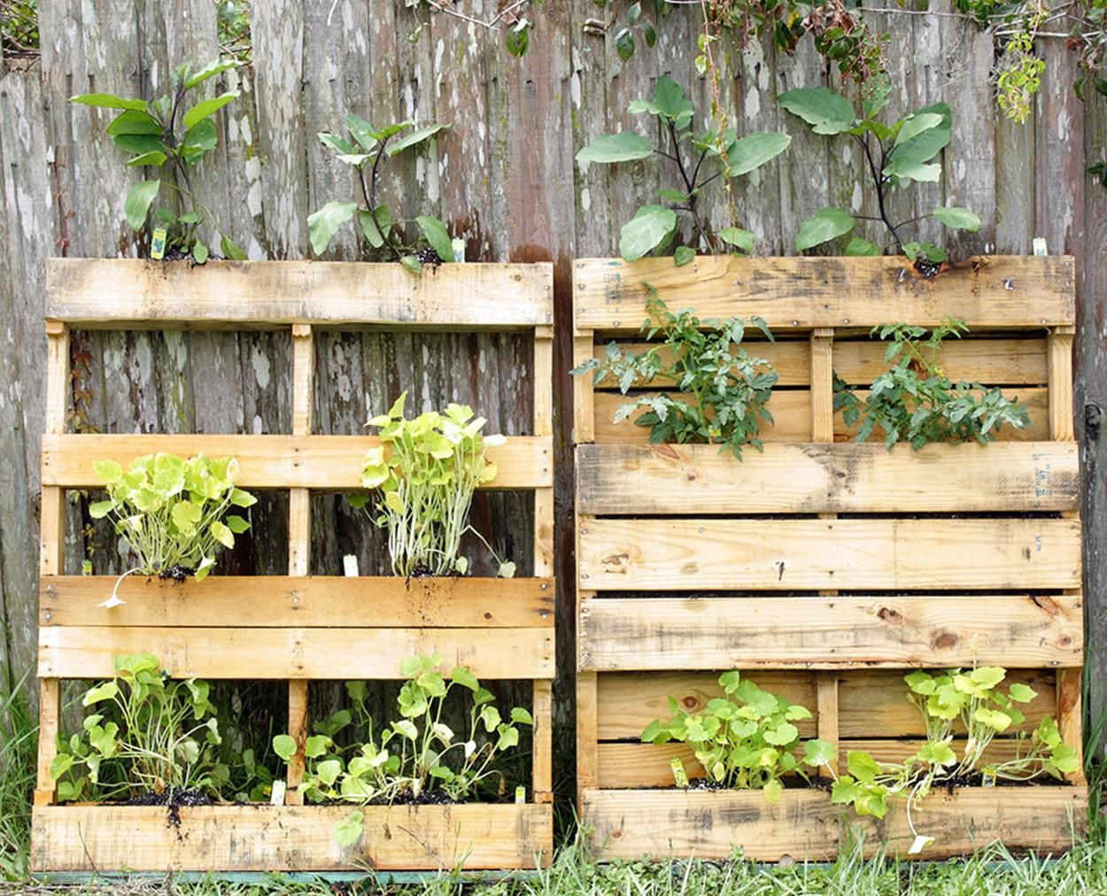 DIY Upcycled Wood Pallet Vertical Gardens in 2020 ...