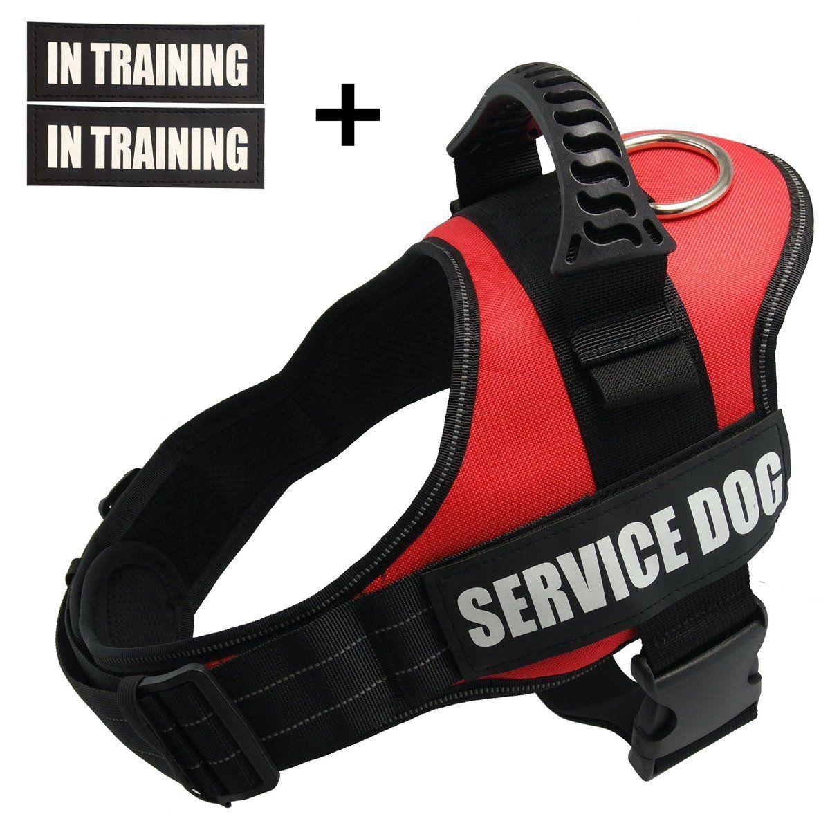 TOPPLE Servcie dog In Training Vest HarnessReflective