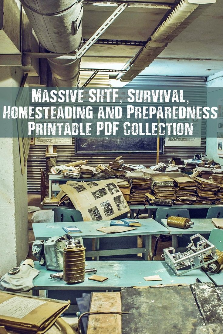 Massive Survival & Preparedness Printable PDF Collection - Print out a this  massive collection of PDF files as reference for a possible SHTF scenario,  ...