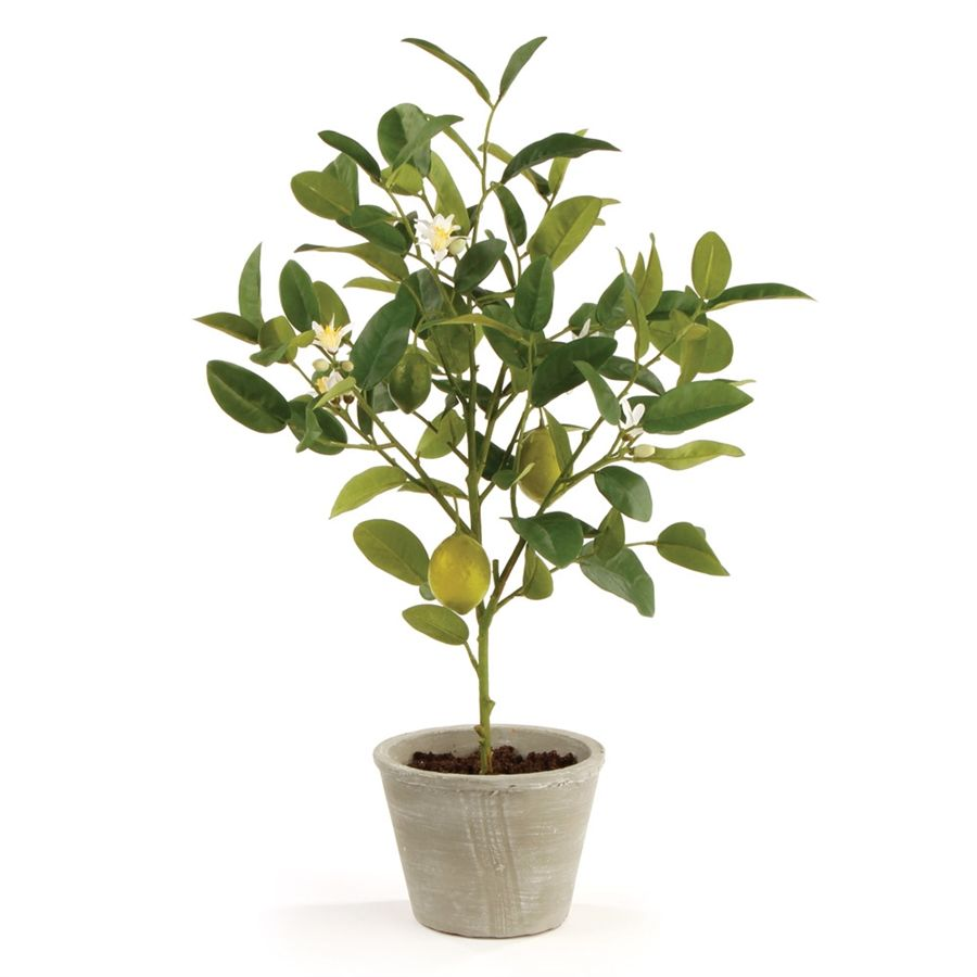 "LEMON TOPIARY POTTED 24"" Potted trees, Faux plants and"